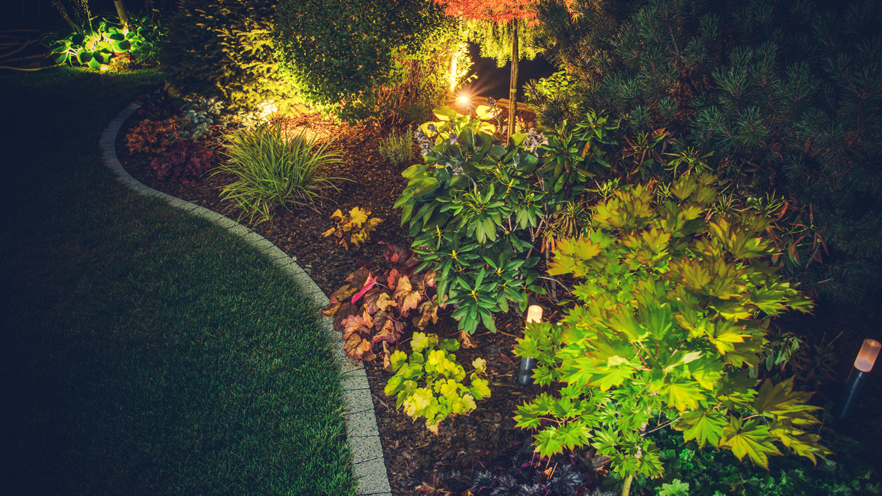 Landscape Lighting - Let It Grow